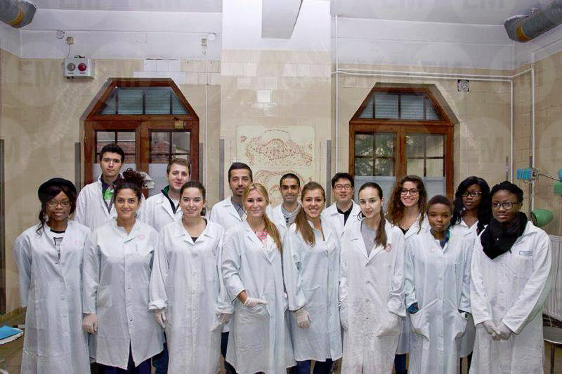 Experience of Africa Palomera, Student at the Faculty of Medicine in Szeged, January 2014